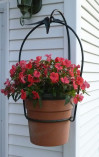 Front View of Hanging Planter