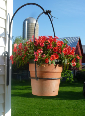 Side View of Hanging Planter
